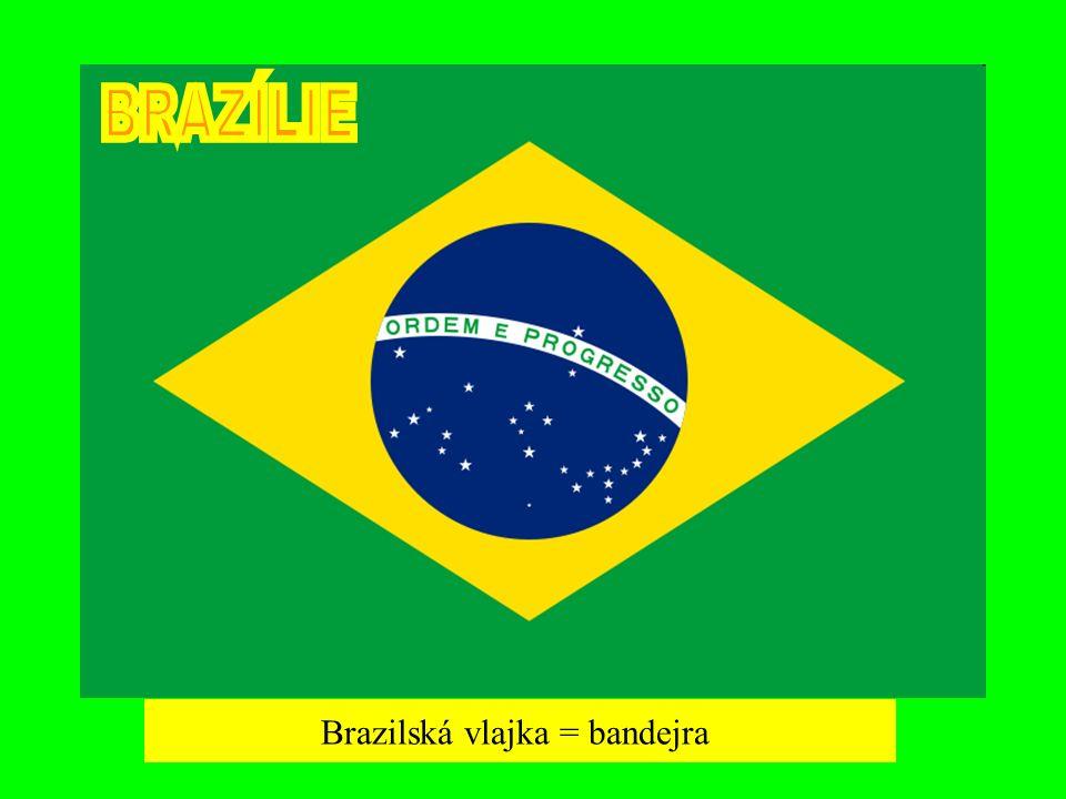 Brazilská vlajka = bandejra