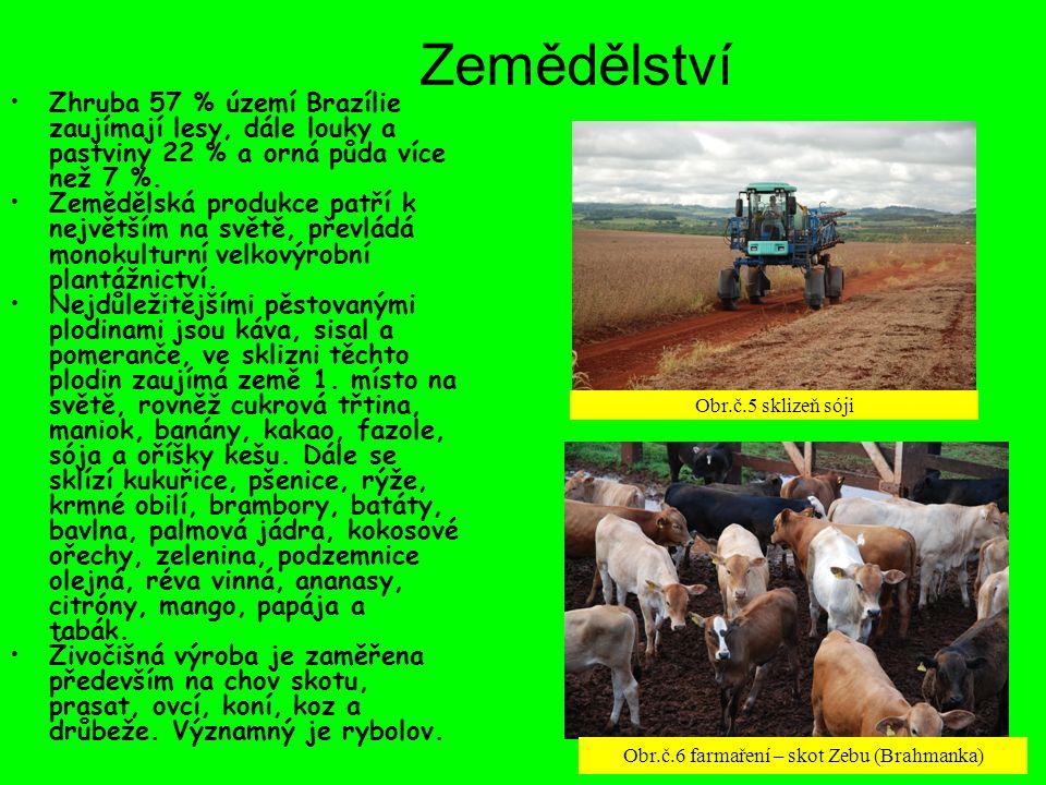 Zemědělství Zhruba 57 % území Brazílie zaujímají lesy, dále louky a pastviny 22 % a orná půda více než 7 %. Zemědělská produkce patří k největším na s