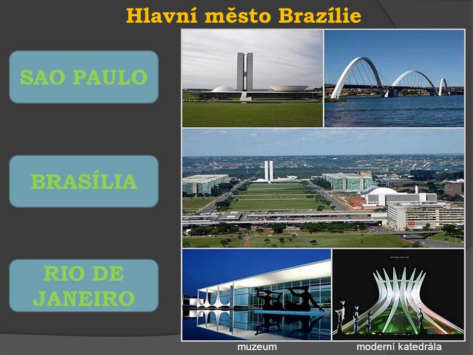 Hlavní město Brazílie SAO PAULO BRASÍLIA RIO DE JANEIRO moderní katedrálamuzeum
