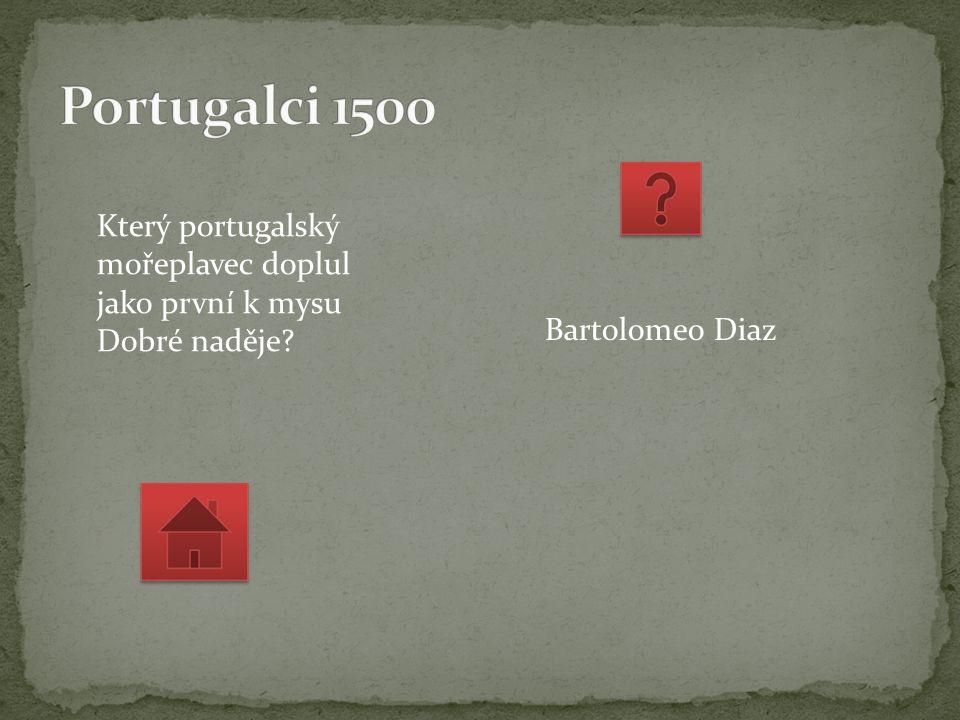Který portugalský mořeplavec doplul jako první k mysu Dobré naděje Bartolomeo Diaz