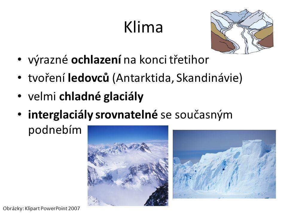 Klima výrazné ochlazení na konci třetihor tvoření ledovců (Antarktida, Skandinávie) velmi chladné glaciály interglaciály srovnatelné se současným podnebím Obrázky: Klipart PowerPoint 2007