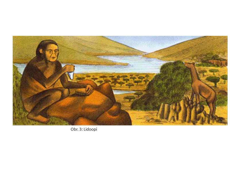 Obr. 3: Lidoopi