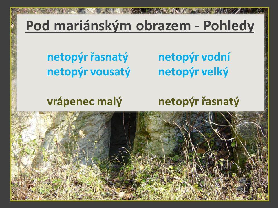 Foto: M. Velešík