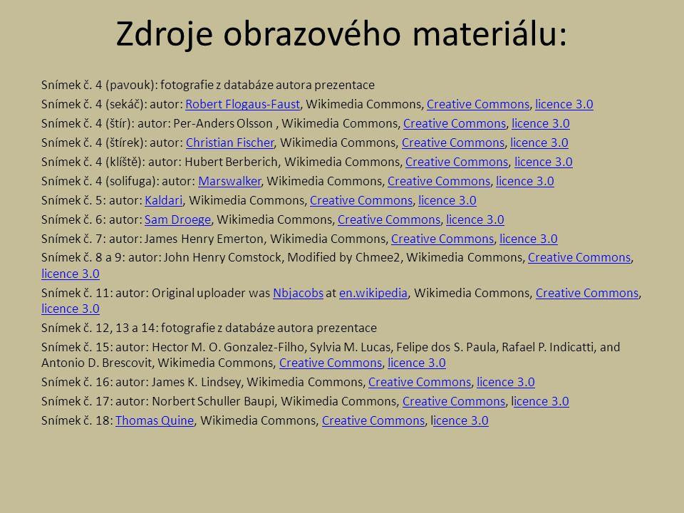 Snímek č. 4 (pavouk): fotografie z databáze autora prezentace Snímek č.