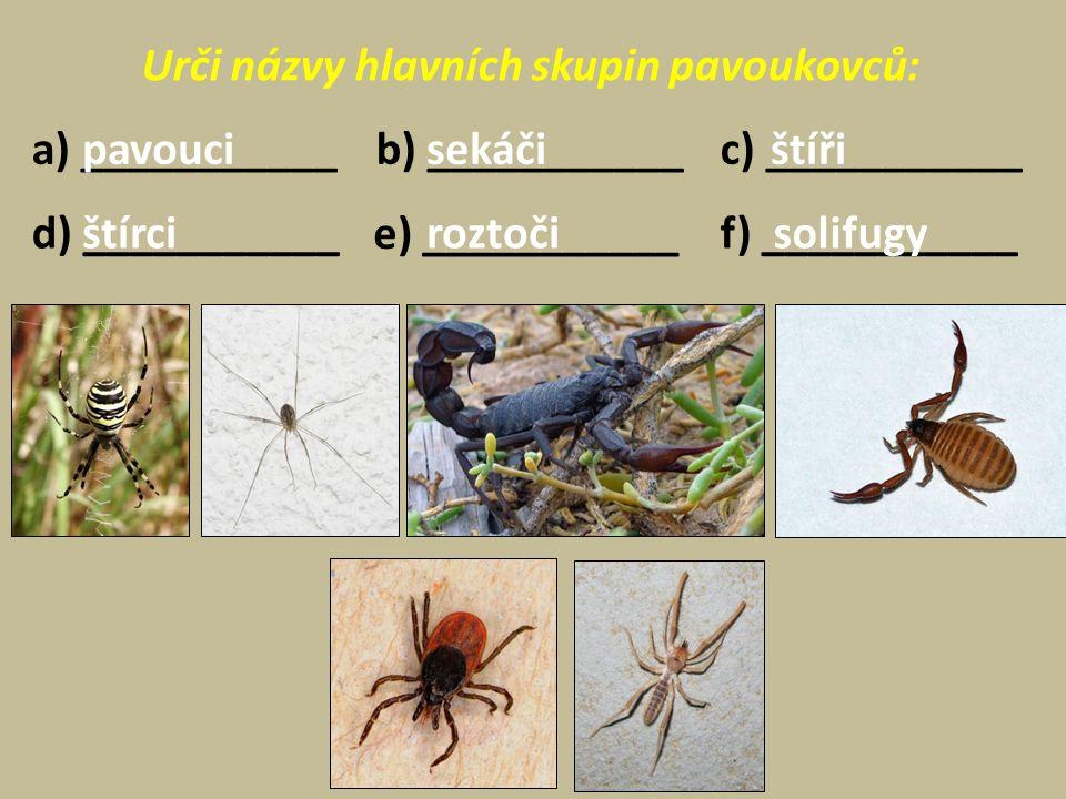 Urči názvy hlavních skupin pavoukovců: a) ___________c) ___________ d) ___________ e) ___________ f) ___________ b) ___________pavoucisekáčištíři štírciroztoči solifugy