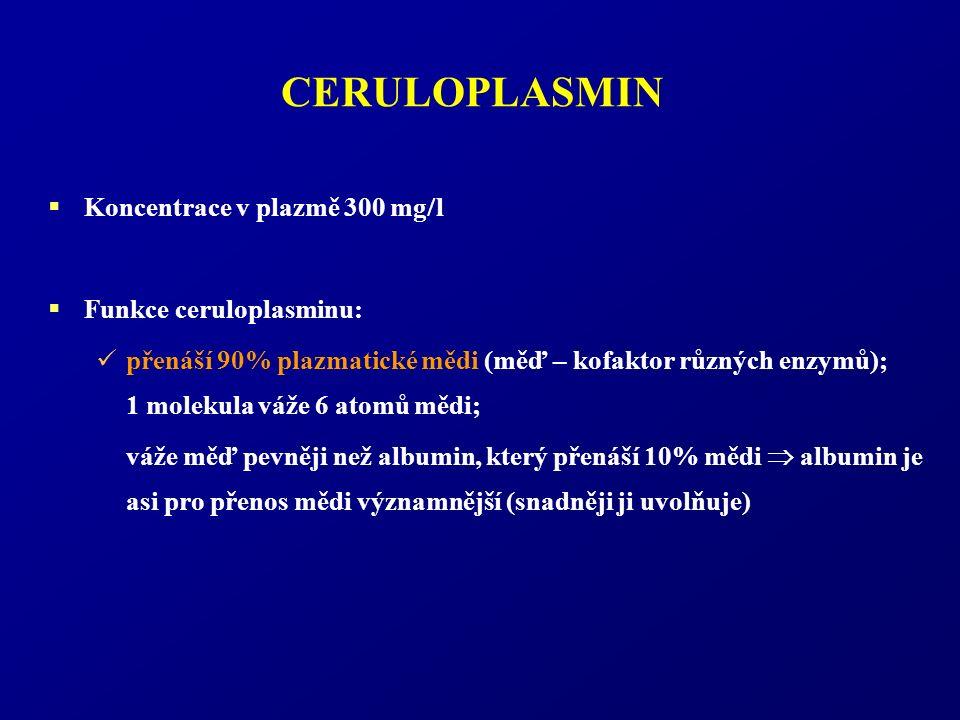 CERULOPLASMIN  Koncentrace v plazmě 300 mg  l  Funkce ceruloplasminu: přenáší 90% plazmatické mědi (měď – kofaktor různých enzymů); 1 molekula váže 6 atomů mědi; váže měď pevněji než albumin, který přenáší 10% mědi  albumin je asi pro přenos mědi významnější (snadněji ji uvolňuje)