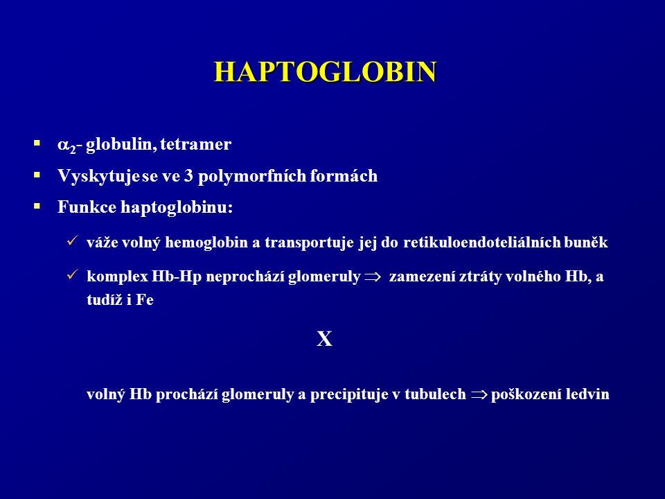 HAPTOGLOBIN   2 - globulin, tetramer  Vyskytuje se ve 3 polymorfních formách  Funkce haptoglobinu: váže volný hemoglobin a transportuje jej do retikuloendoteliálních buněk komplex Hb-Hp neprochází glomeruly  zamezení ztráty volného Hb, a tudíž i Fe volný Hb prochází glomeruly a precipituje v tubulech  poškození ledvin X