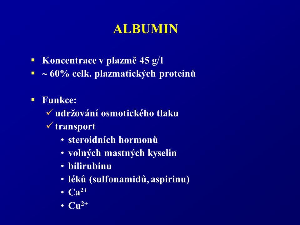 ALBUMIN  Koncentrace v plazmě 45 g  l   60% celk. plazmatických proteinů  Funkce: udržování osmotického tlaku transport steroidních hormonů volný