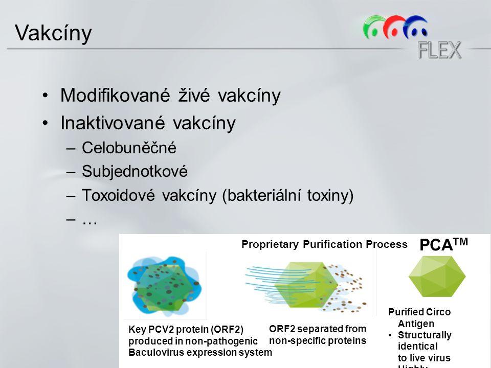 Modifikované živé vakcíny Inaktivované vakcíny –Celobuněčné –Subjednotkové –Toxoidové vakcíny (bakteriální toxiny) –… Vakcíny Key PCV2 protein (ORF2) produced in non-pathogenic Baculovirus expression system Proprietary Purification Process ORF2 separated from non-specific proteins PCA TM Purified Circo Antigen Structurally identical to live virus Highly immunogenic