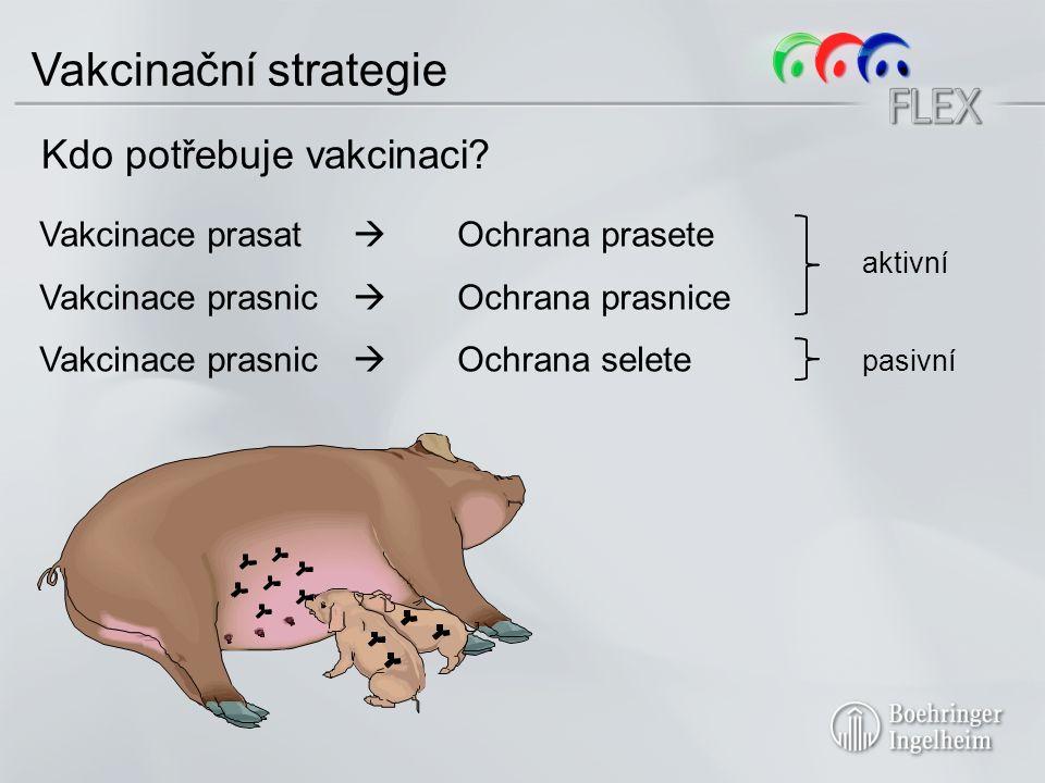 Vakcinační strategie Kdo potřebuje vakcinaci.