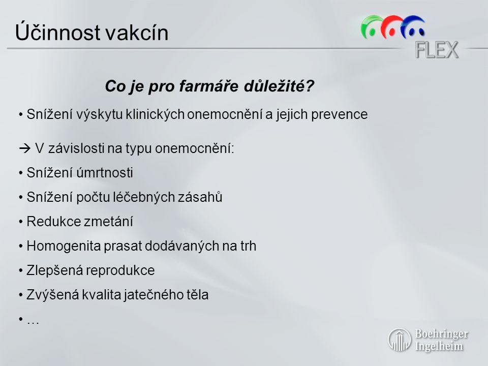 Účinnost vakcín Co je pro farmáře důležité.