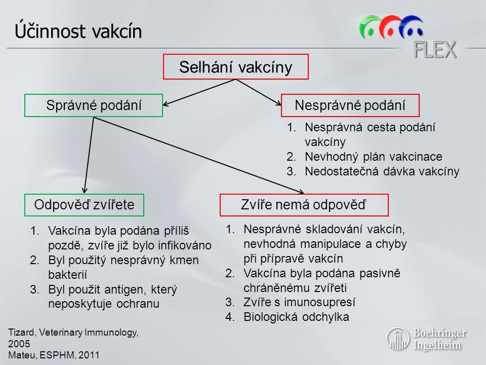 Účinnost vakcín Selhání vakcíny Správné podáníNesprávné podání Tizard, Veterinary Immunology, 2005 Mateu, ESPHM, 2011 Odpověď zvířeteZvíře nemá odpověď 1.Vakcína byla podána příliš pozdě, zvíře již bylo infikováno 2.Byl použitý nesprávný kmen bakterií 3.Byl použit antigen, který neposkytuje ochranu 1.Nesprávná cesta podání vakcíny 2.Nevhodný plán vakcinace 3.Nedostatečná dávka vakcíny 1.Nesprávné skladování vakcín, nevhodná manipulace a chyby při přípravě vakcín 2.Vakcína byla podána pasivně chráněnému zvířeti 3.Zvíře s imunosupresí 4.Biologická odchylka