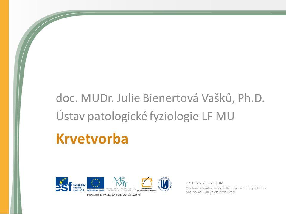 CZ.1.07/2.2.00/28.0041 Centrum interaktivních a multimediálních studijních opor pro inovaci výuky a efektivní učení Krvetvorba doc. MUDr. Julie Biener