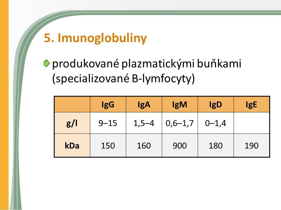 5. Imunoglobuliny produkované plazmatickými buňkami (specializované B-lymfocyty) IgGIgAIgMIgDIgE g/l9–151,5–40,6–1,70–1,4 kDa150160900180190