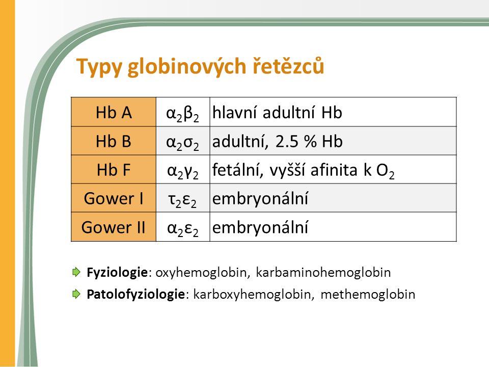 Typy globinových řetězců Hb Aα2β2α2β2 hlavní adultní Hb Hb Bα2σ2α2σ2 adultní, 2.5 % Hb Hb Fα2γ2α2γ2 fetální, vyšší afinita k O 2 Gower Iτ2ε2τ2ε2 embryonální Gower IIα2ε2α2ε2 embryonální Fyziologie: oxyhemoglobin, karbaminohemoglobin Patolofyziologie: karboxyhemoglobin, methemoglobin