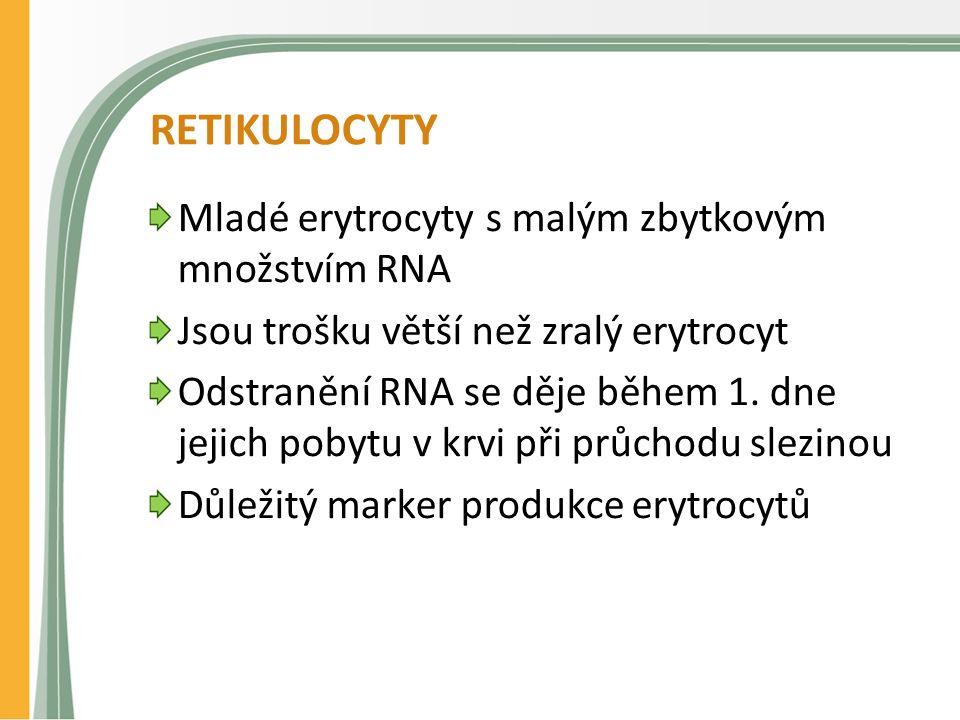 RETIKULOCYTY Mladé erytrocyty s malým zbytkovým množstvím RNA Jsou trošku větší než zralý erytrocyt Odstranění RNA se děje během 1. dne jejich pobytu