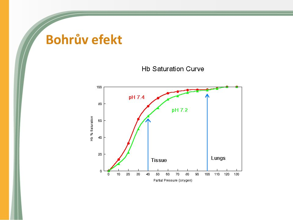 Bohrův efekt