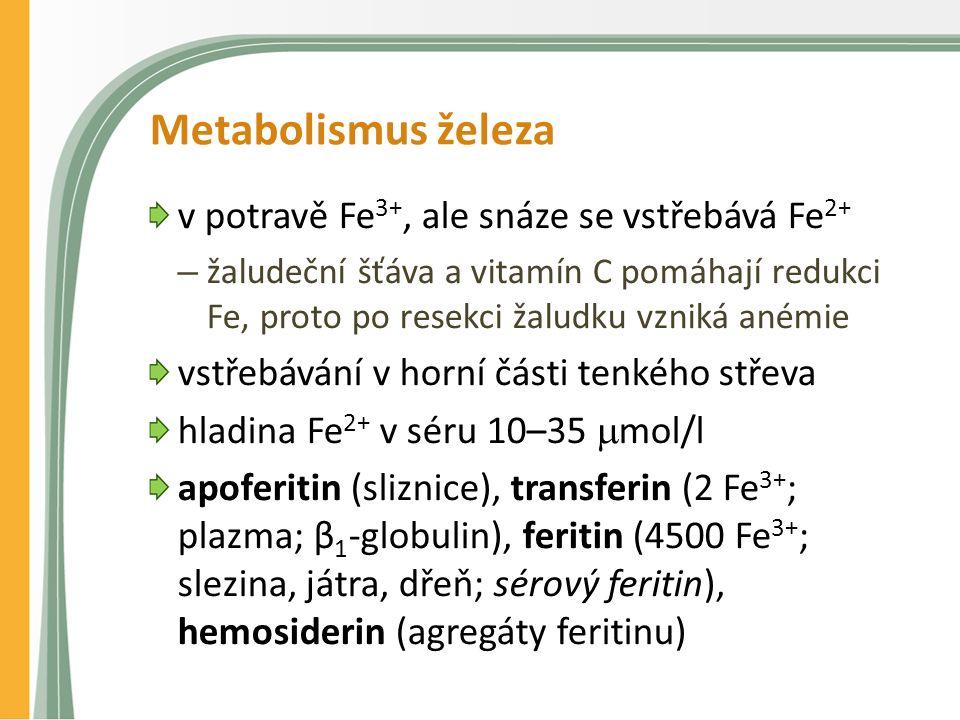 Metabolismus železa v potravě Fe 3+, ale snáze se vstřebává Fe 2+ – žaludeční šťáva a vitamín C pomáhají redukci Fe, proto po resekci žaludku vzniká anémie vstřebávání v horní části tenkého střeva hladina Fe 2+ v séru 10–35  mol/l apoferitin (sliznice), transferin (2 Fe 3+ ; plazma; β 1 -globulin), feritin (4500 Fe 3+ ; slezina, játra, dřeň; sérový feritin), hemosiderin (agregáty feritinu)