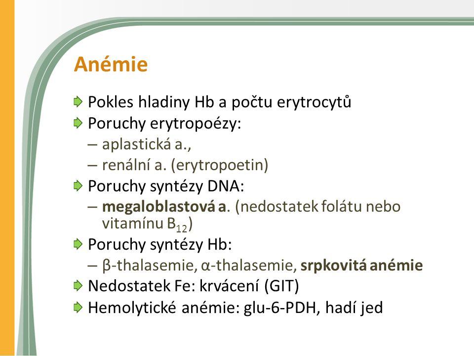 Anémie Pokles hladiny Hb a počtu erytrocytů Poruchy erytropoézy: – aplastická a., – renální a. (erytropoetin) Poruchy syntézy DNA: – megaloblastová a.