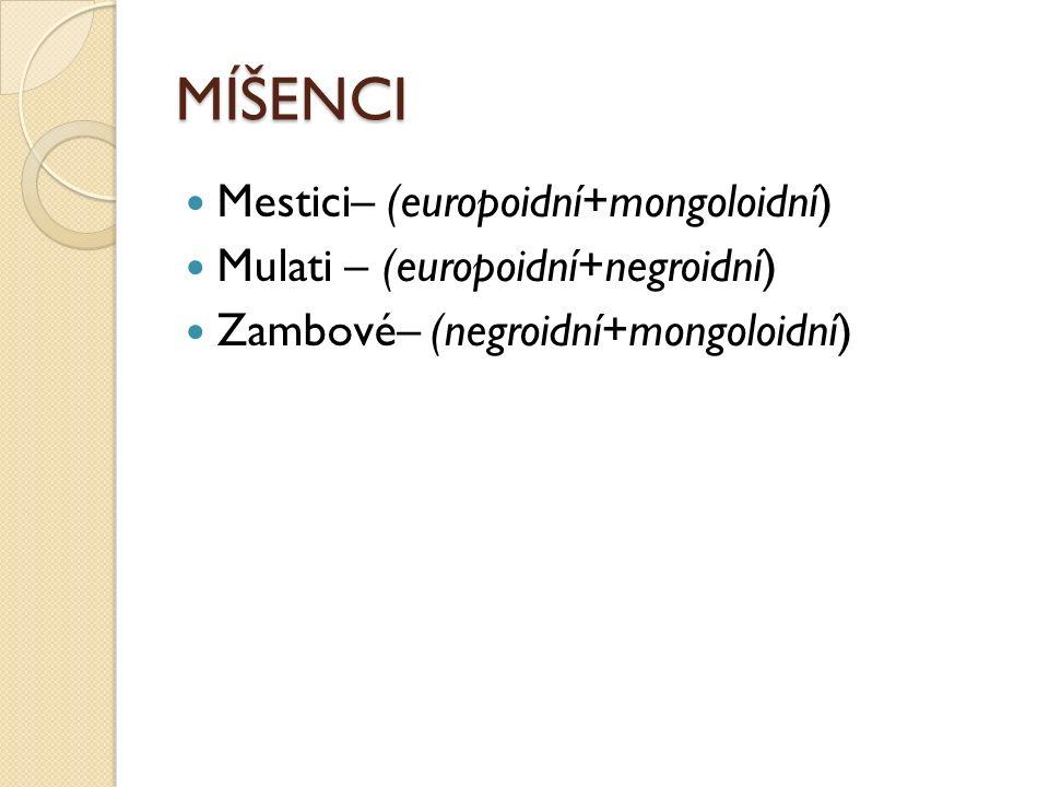 MÍŠENCI Mestici– (europoidní+mongoloidní) Mulati – (europoidní+negroidní) Zambové– (negroidní+mongoloidní)