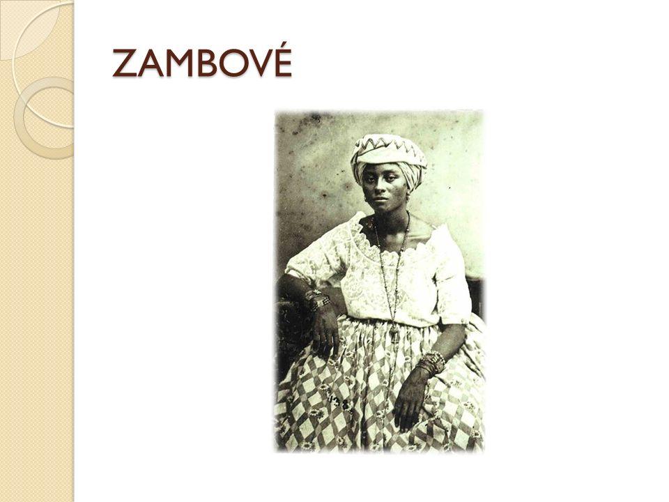 ZAMBOVÉ
