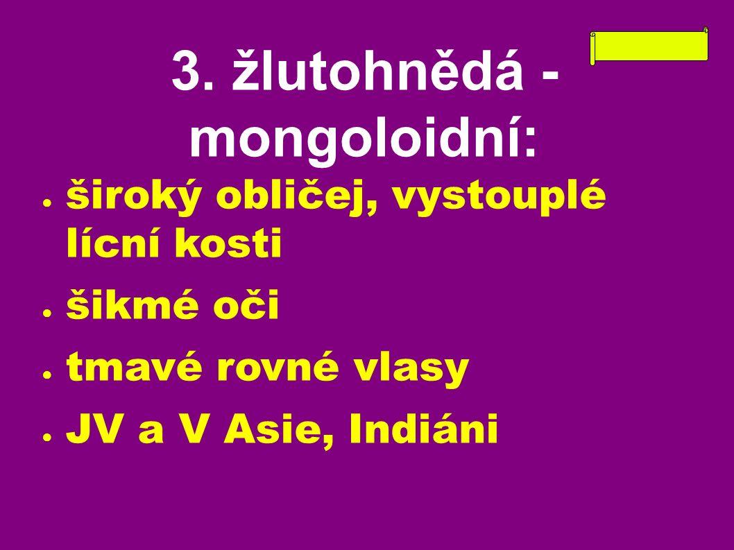 3. žlutohnědá - mongoloidní: ● široký obličej, vystouplé lícní kosti ● šikmé oči ● tmavé rovné vlasy ● JV a V Asie, Indiáni