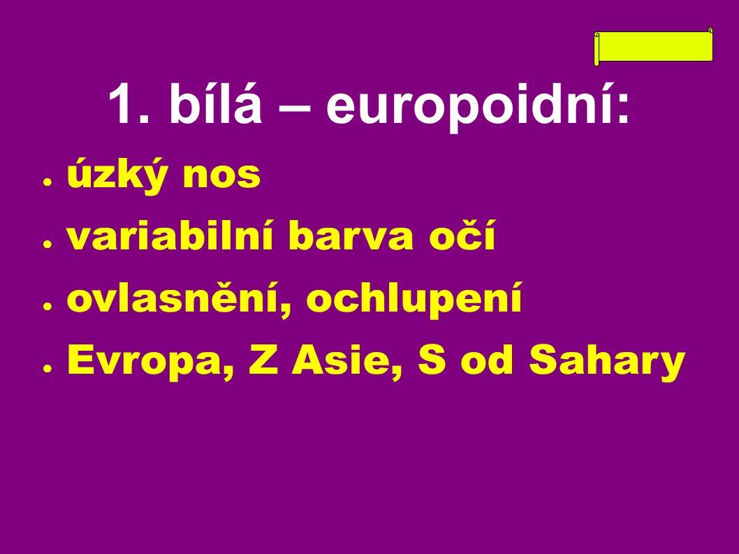 1. bílá – europoidní: ● úzký nos ● variabilní barva očí ● ovlasnění, ochlupení ● Evropa, Z Asie, S od Sahary
