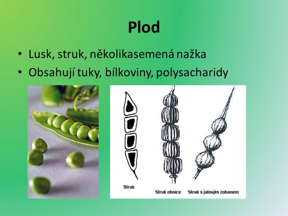 Plod Lusk, struk, několikasemená nažka Obsahují tuky, bílkoviny, polysacharidy