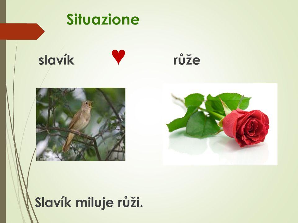 Situazione slavík ♥ růže Slavík miluje růži.