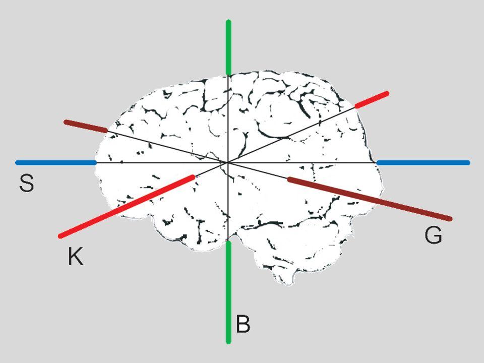 1.klíčové kompetence 2.průřezová témata 3.nevyvážená skladba školních předmětů C.Celostní pohled ve škole