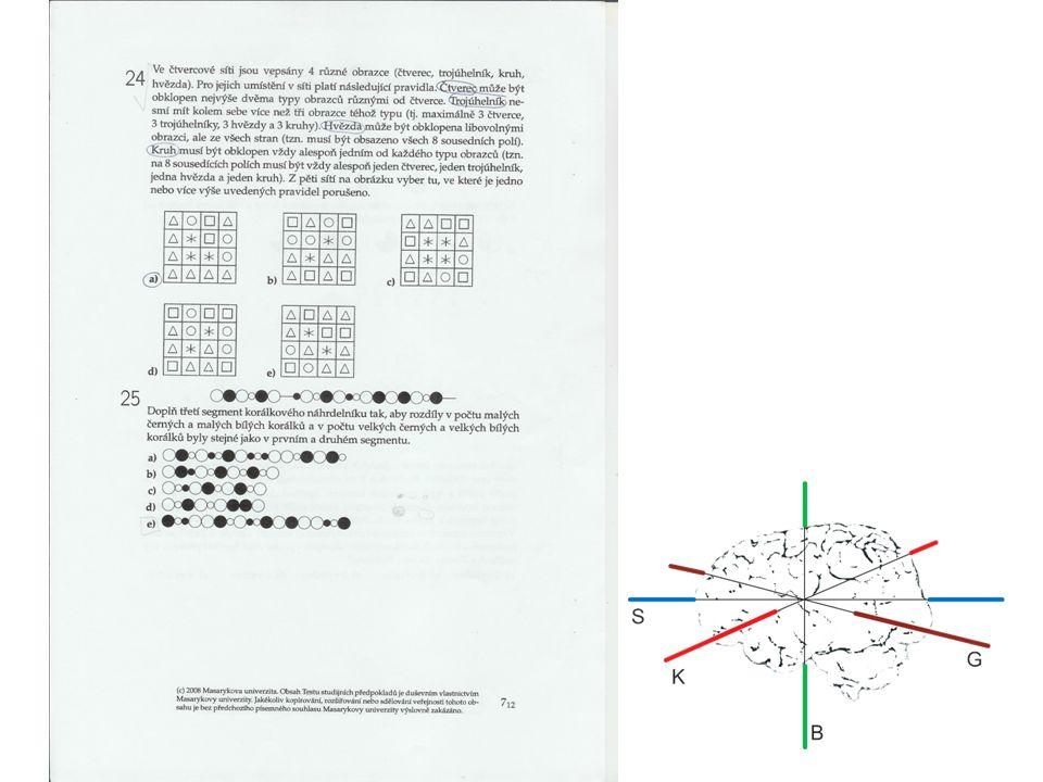 C.Corpus callosum - spojení obou hemisfér 1.mozková gymnastika