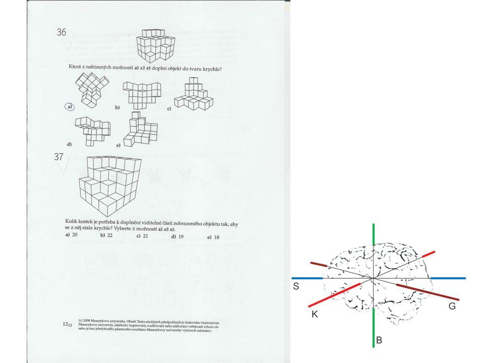 II.Trojjediný mozek - dimenze K A.Suzan Kovaliková, 1993