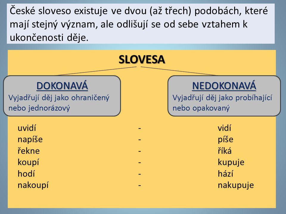 České sloveso existuje ve dvou (až třech) podobách, které mají stejný význam, ale odlišují se od sebe vztahem k ukončenosti děje.