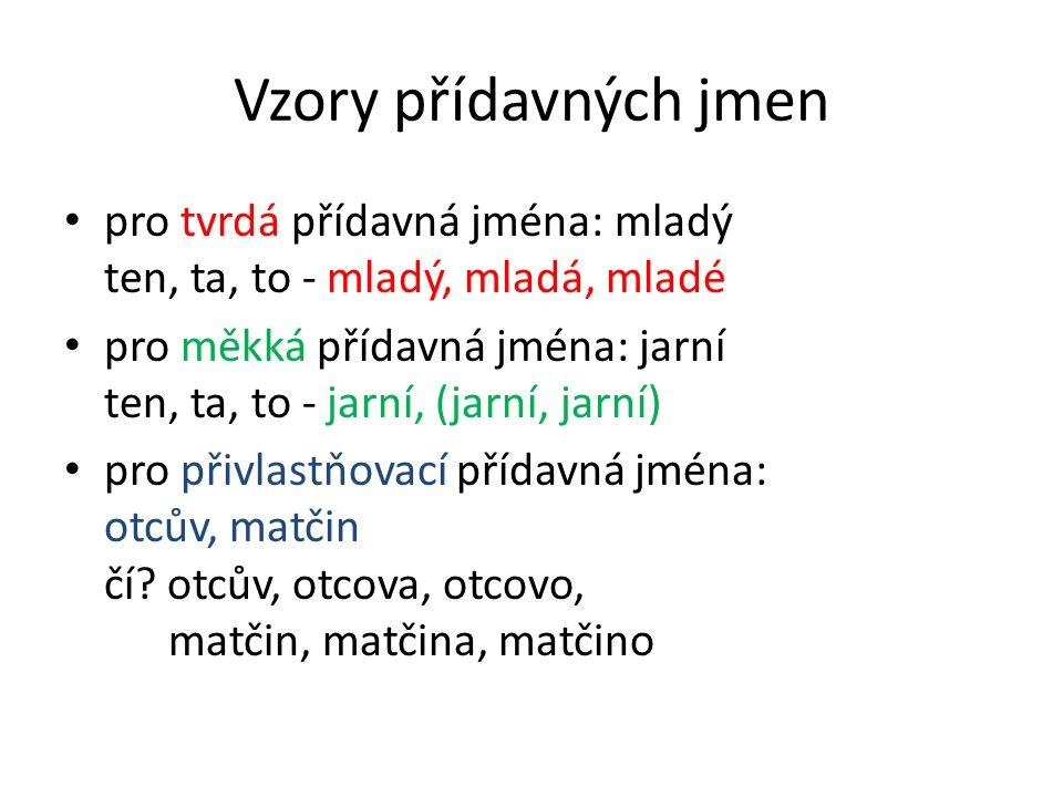 Vzory přídavných jmen pro tvrdá přídavná jména: mladý ten, ta, to - mladý, mladá, mladé pro měkká přídavná jména: jarní ten, ta, to - jarní, (jarní, jarní) pro přivlastňovací přídavná jména: otcův, matčin čí.