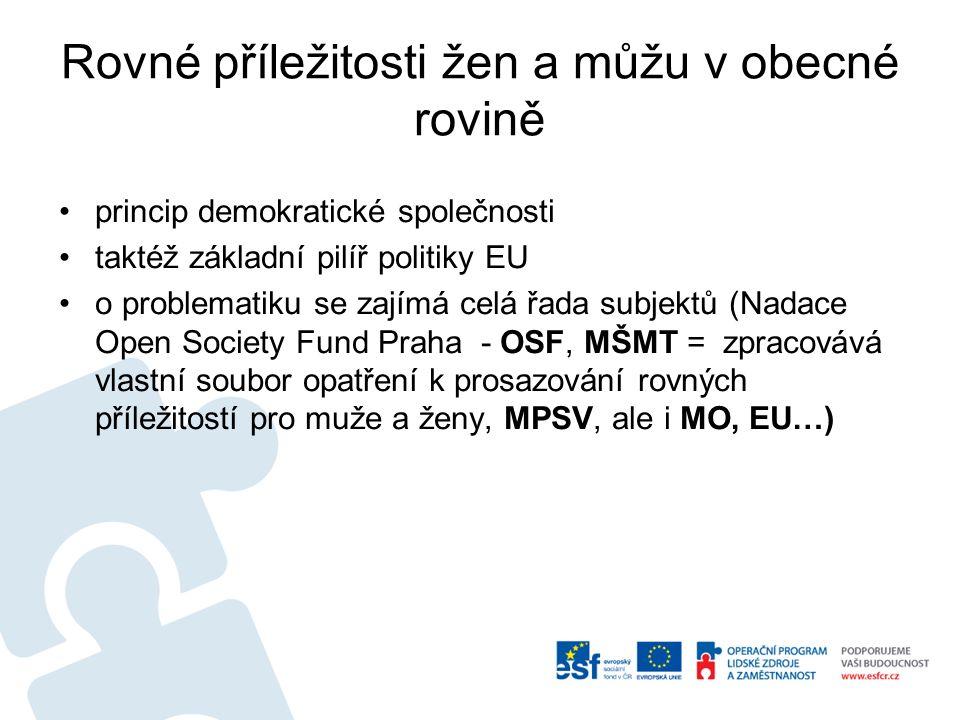 Rovné příležitosti žen a můžu v obecné rovině princip demokratické společnosti taktéž základní pilíř politiky EU o problematiku se zajímá celá řada subjektů (Nadace Open Society Fund Praha - OSF, MŠMT = zpracovává vlastní soubor opatření k prosazování rovných příležitostí pro muže a ženy, MPSV, ale i MO, EU…)