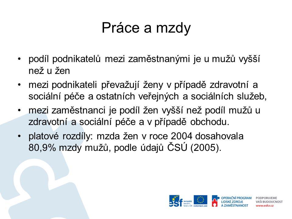 Další statistiky nezaměstnanost: v roce 2004 ČR 9,9% ženy, 7,0% muži; podíl na vedoucích funkcích (zákonodárci, vedoucí a řídící pracovníci): ženy tvoří 27,8 % mezi zákonodárci, vedoucími a řídícími pracovníky (ČSÚ, 2005).
