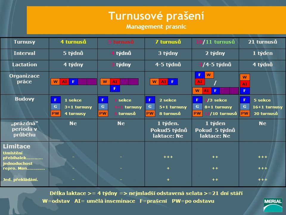"""Turnusové prašení Management prasnic Turnusy4 turnusů5 turnusů7 turnusů10/11 turnusů21 turnusů Interval5 týdnů4 týdnů3 týdny2 týdny1 týden Lactation4 týdny3 týdny4-5 týdnů3/4-5 týdnů4 týdnů Organizace práce / Budovy """"prázdná perioda v průběhu NeNeNeNe1 týden."""