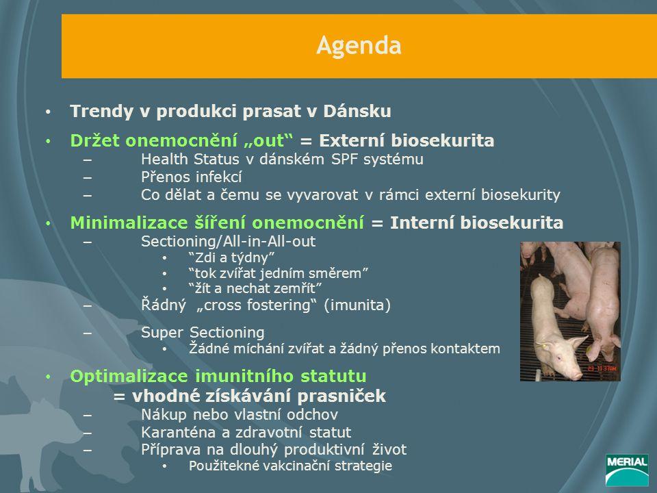 """Agenda Trendy v produkci prasat v Dánsku Držet onemocnění """"out = Externí biosekurita – Health Status v dánském SPF systému – Přenos infekcí – Co dělat a čemu se vyvarovat v rámci externí biosekurity Minimalizace šíření onemocnění = Interní biosekurita – Sectioning/All-in-All-out Zdi a týdny tok zvířat jedním směrem žít a nechat zemřít – Řádný """"cross fostering (imunita) – Super Sectioning Žádné míchání zvířat a žádný přenos kontaktem Optimalizace imunitního statutu = vhodné získávání prasniček – Nákup nebo vlastní odchov – Karanténa a zdravotní statut – Příprava na dlouhý produktivní život Použitekné vakcinační strategie"""