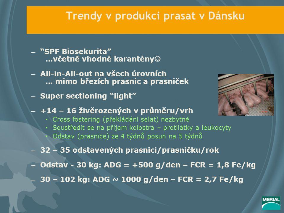 Trendy v produkci prasat v Dánsku – SPF Biosekurita …včetně vhodné karantény – All-in-All-out na všech úrovních … mimo březích prasnic a prasniček – Super sectioning light – +14 – 16 živěrozených v průměru/vrh Cross fostering (překládání selat) nezbytné Soustředit se na příjem kolostra – protilátky a leukocyty Odstav (prasnice) ze 4 týdnů posun na 5 týdnů – 32 – 35 odstavených prasnici/prasničku/rok – Odstav - 30 kg: ADG = +500 g/den – FCR = 1,8 Fe/kg – 30 – 102 kg: ADG ~ 1000 g/den – FCR = 2,7 Fe/kg