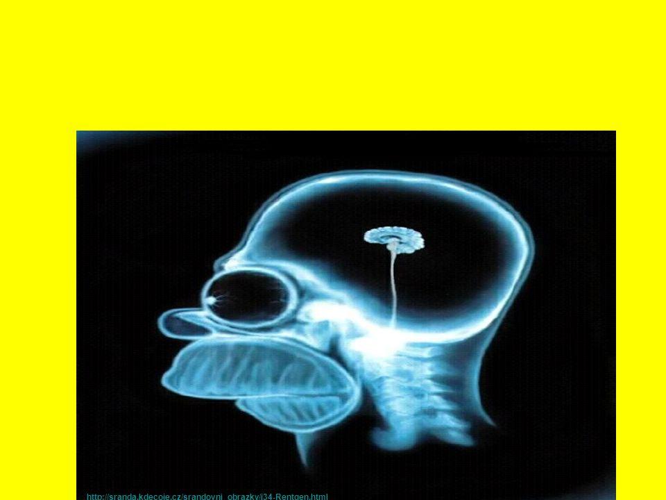 Části mozku KONCOVÝ MOZEK MEZIMOZEK STŘEDNÍ MOZEK MOZEČEK PRODLOUŽENÁ MÍCHA