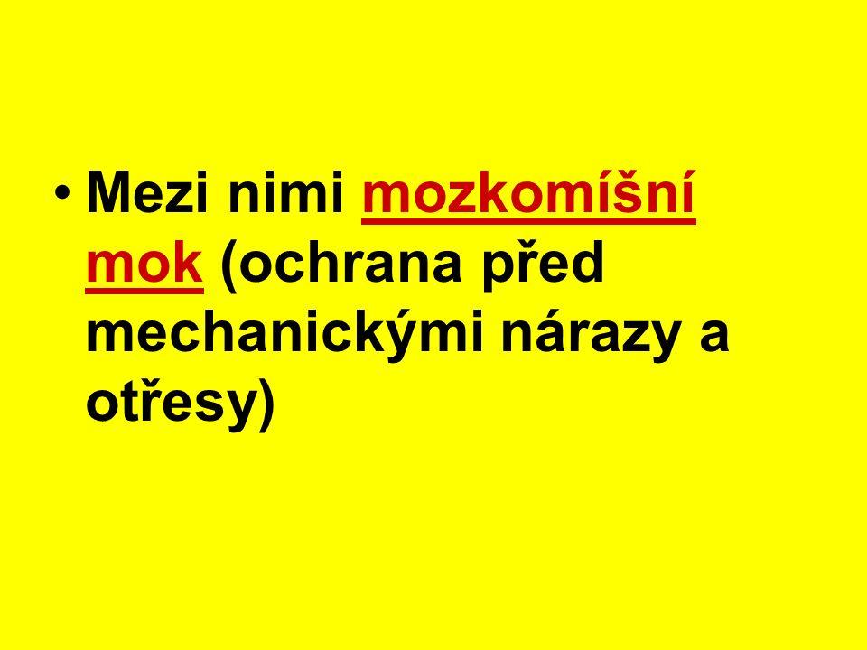 Mozek a mícha mají na povrchu 3-vrstevný obal – pleny mozkové http://www.osel.cz/index.php clanek=4829 http://telemedicina.med.muni.cz/neurochirurgie/rubrika.php rid=400600