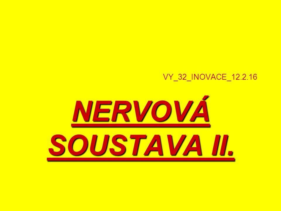 VY_32_INOVACE_12.2.16 NERVOVÁ SOUSTAVA II.
