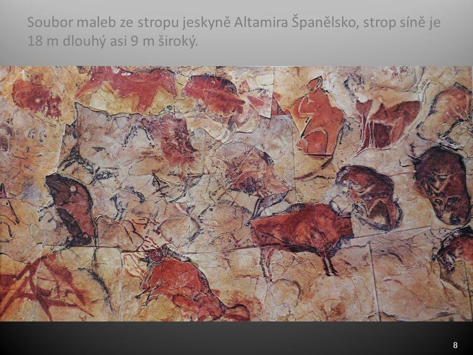 8 Soubor maleb ze stropu jeskyně Altamira Španělsko, strop síně je 18 m dlouhý asi 9 m široký.