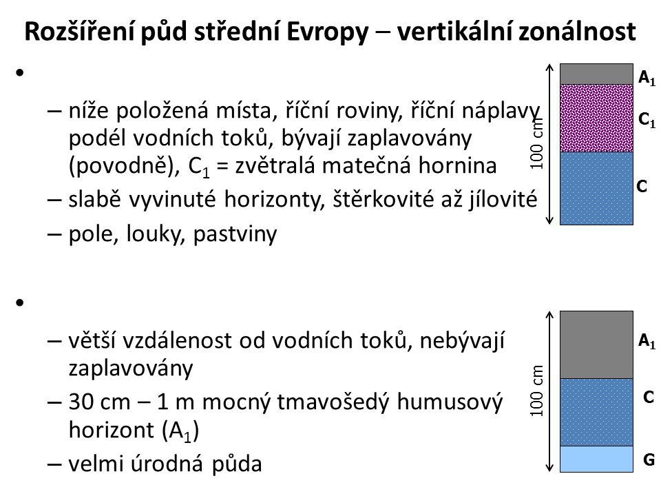 Rozšíření půd střední Evropy – vertikální zonálnost – níže položená místa, říční roviny, říční náplavy podél vodních toků, bývají zaplavovány (povodně), C 1 = zvětralá matečná hornina – slabě vyvinuté horizonty, štěrkovité až jílovité – pole, louky, pastviny – větší vzdálenost od vodních toků, nebývají zaplavovány – 30 cm – 1 m mocný tmavošedý humusový horizont (A 1 ) – velmi úrodná půda 100 cm A1A1 C1C1 C C A1A1 G
