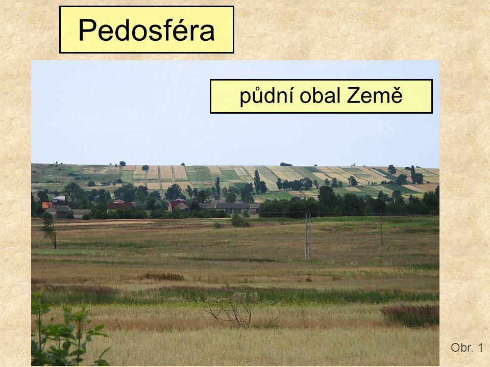 Pedosféra půdní obal Země Obr. 1