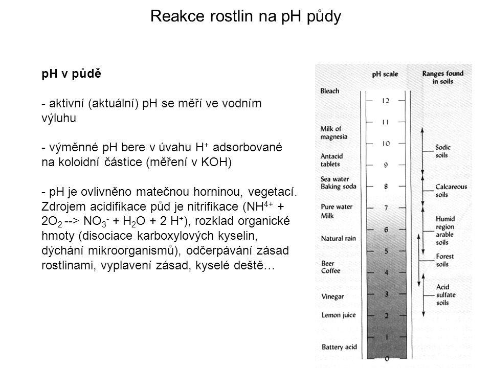 Reakce rostlin na pH půdy pH v půdě - aktivní (aktuální) pH se měří ve vodním výluhu - výměnné pH bere v úvahu H + adsorbované na koloidní částice (měření v KOH) - pH je ovlivněno matečnou horninou, vegetací.