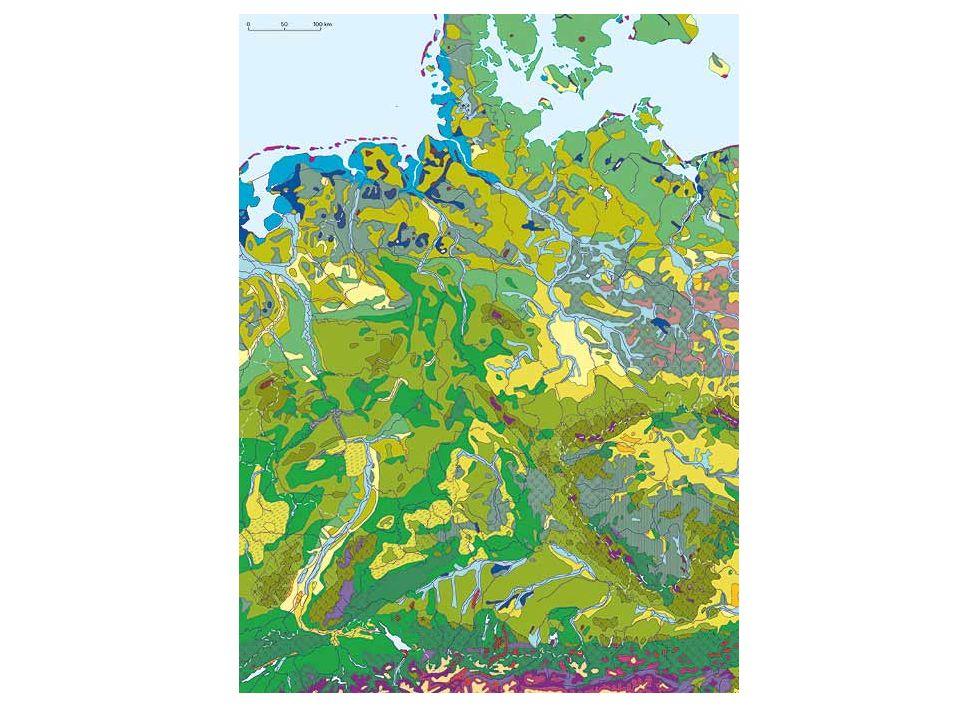 Zaplavení půd Snížení O 2 a redox potenciálu půdy  anaerobní mikrobiální aktivita –NO 3 - redukovány denitrifikačními bct na NH 4 + –redukce Fe a Mn  mobilita a potenciální toxicita hypoxie – parciální tlak O 2 1–5 kPa –zastavuje se růst kořenů, kořenové špičky odumírají, indukce tvorby adventivních kořenů anoxie – úplná absence O 2, respirace přechází na anaerobní disimilaci (akumulace etanolu a acetaldehydu) –indukce zavíraní stomat, často také opad listů, rozpad buněčných membrán, atd.