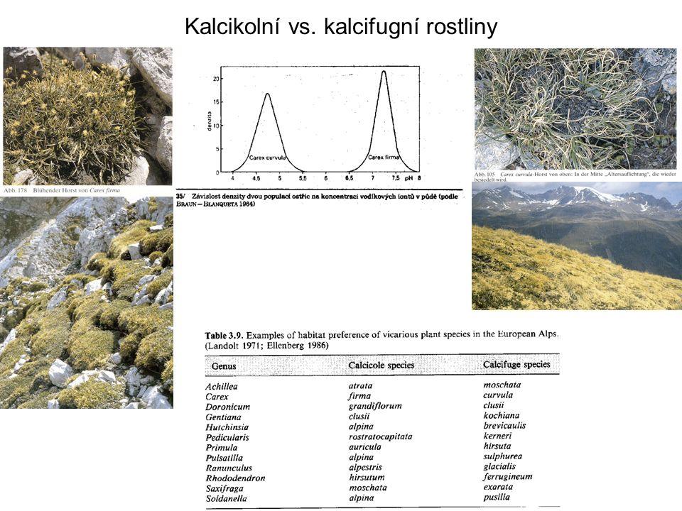 Kalcikolní vs. kalcifugní rostliny