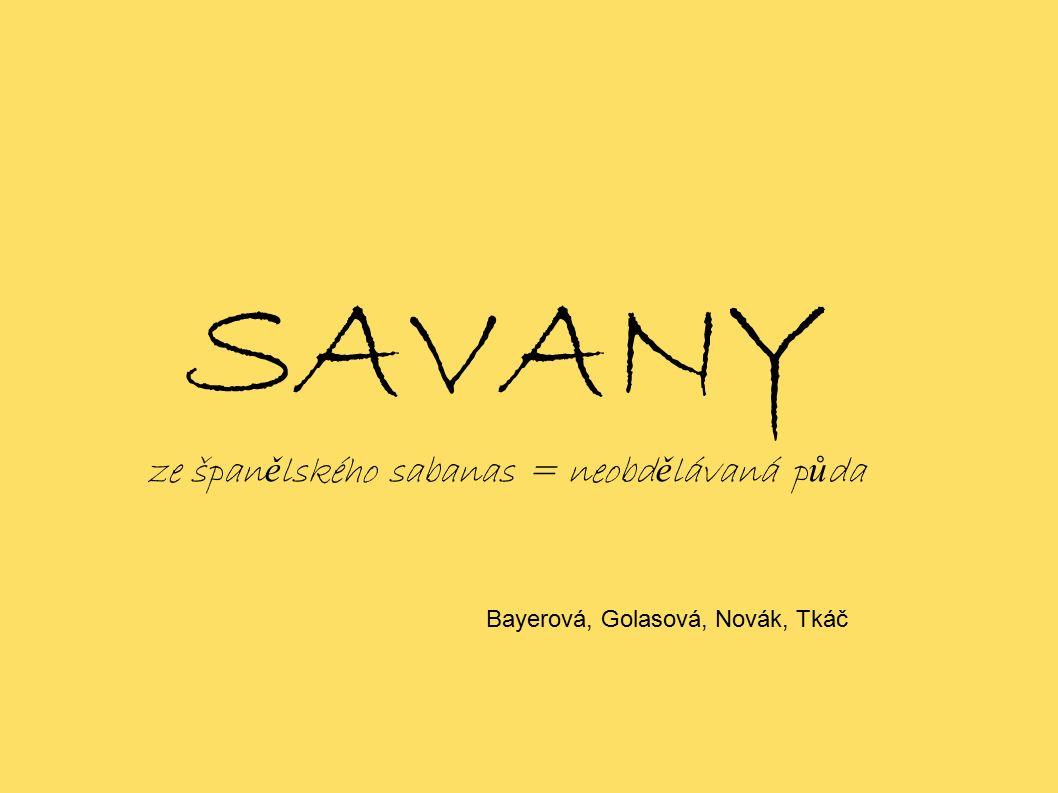 SAVANY ze špan ě lského sabanas = neobd ě lávaná p ů da Bayerová, Golasová, Novák, Tkáč