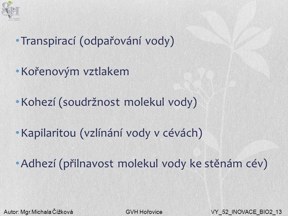 GVH HořoviceAutor: Mgr.Michala ČížkováVY_52_INOVACE_BIO2_13 Transpirací (odpařování vody) Kořenovým vztlakem Kohezí (soudržnost molekul vody) Kapilaritou (vzlínání vody v cévách) Adhezí (přilnavost molekul vody ke stěnám cév)